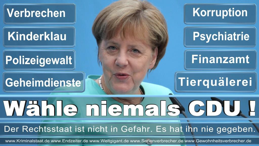 Landtagswahl-2017-CDU-SPD-FDP-AfD-NPD-Piratenpartei-Wahlplakat-Wahlplakate (7)