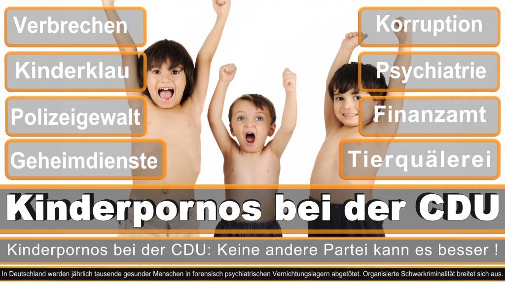 Landtagswahl-2017-NRW-CDU (1)