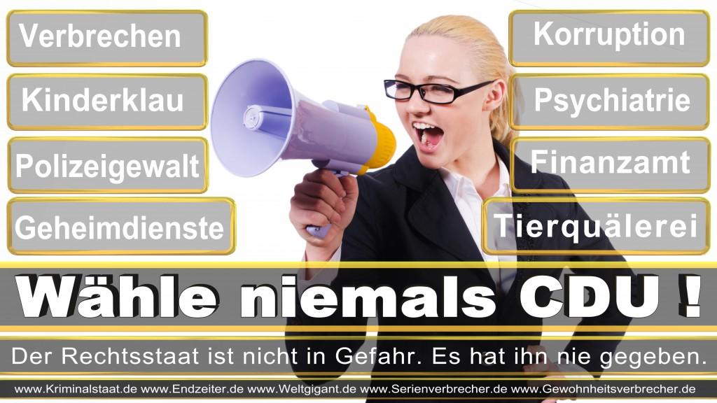 Landtagswahl-2017-NRW-CDU (10)