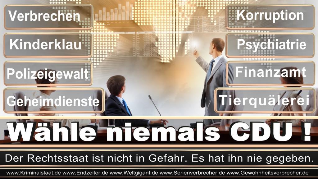 Landtagswahl-2017-NRW-CDU (100)