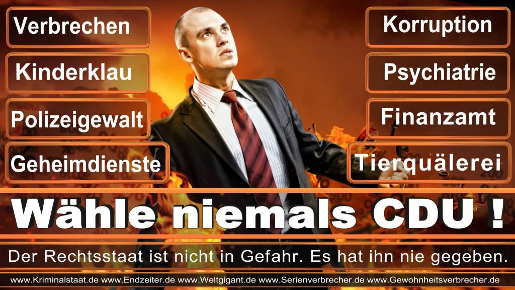 Landtagswahl-2017-NRW-CDU (105)