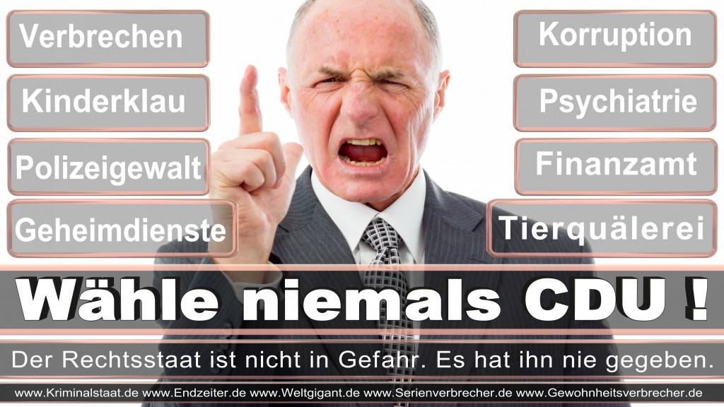 Landtagswahl-2017-NRW-CDU (107)