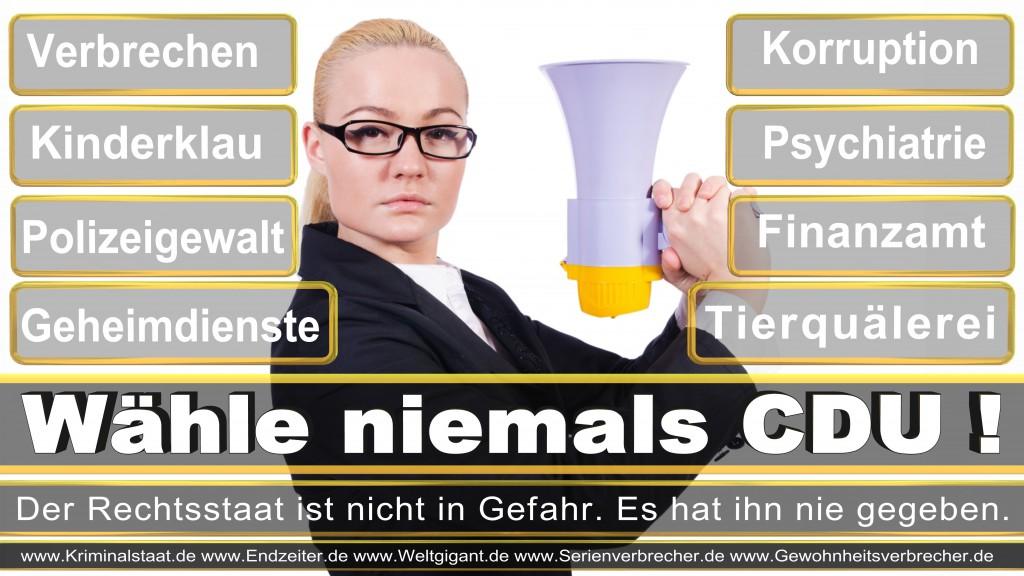 Landtagswahl-2017-NRW-CDU (11)