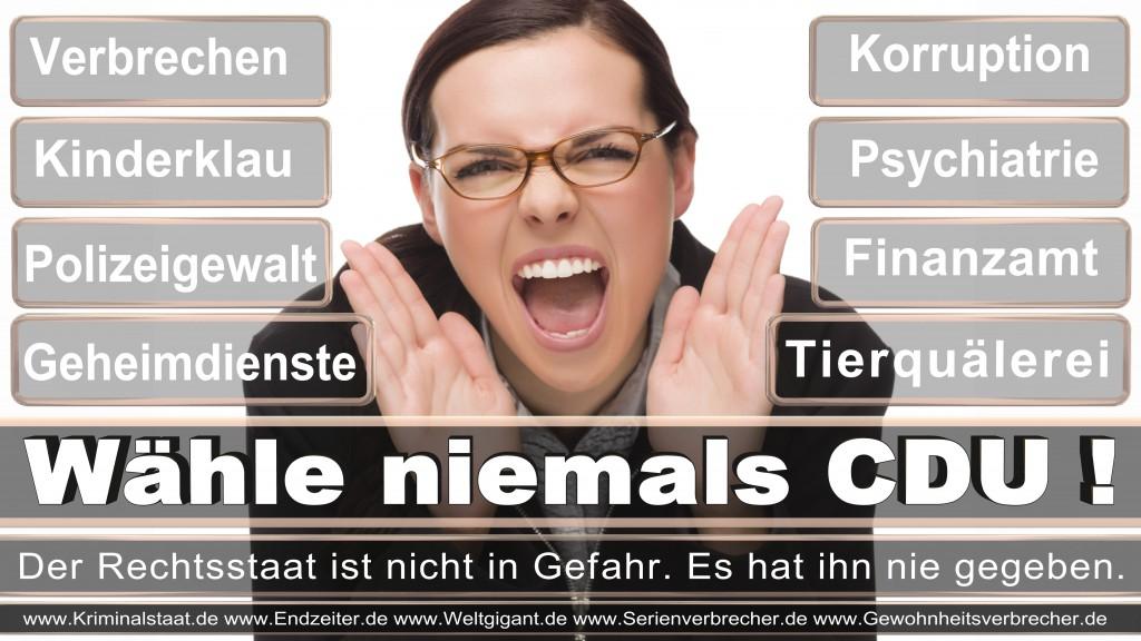 Landtagswahl-2017-NRW-CDU (110)