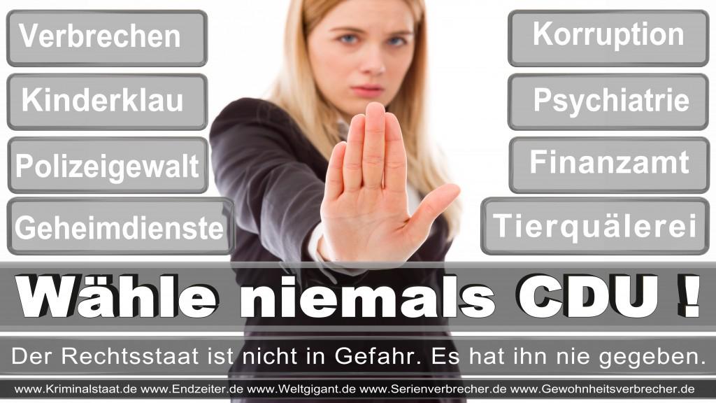 Landtagswahl-2017-NRW-CDU (112)