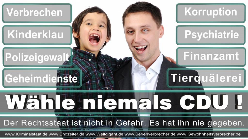 Landtagswahl-2017-NRW-CDU (113)