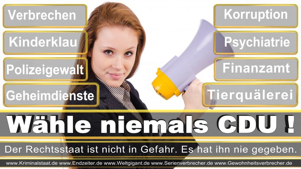 Landtagswahl-2017-NRW-CDU (12)