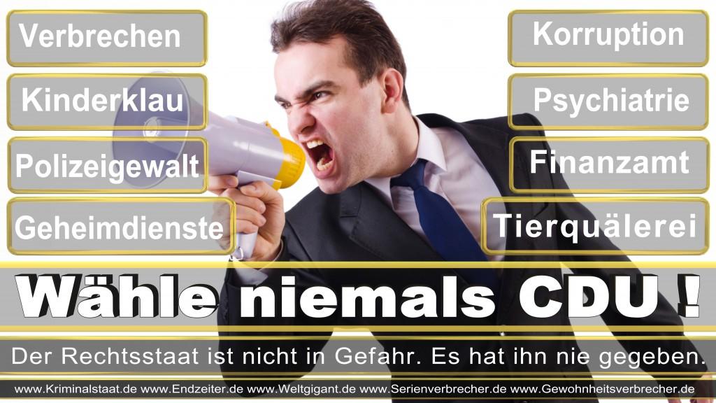 Landtagswahl-2017-NRW-CDU (121)