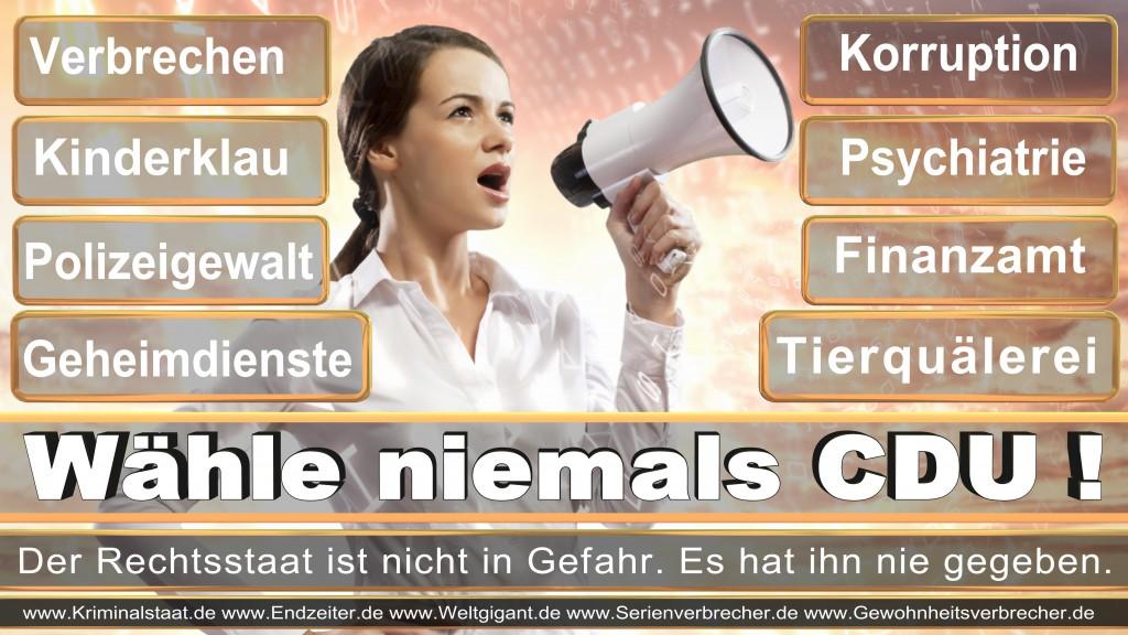 Landtagswahl-2017-NRW-CDU (127)