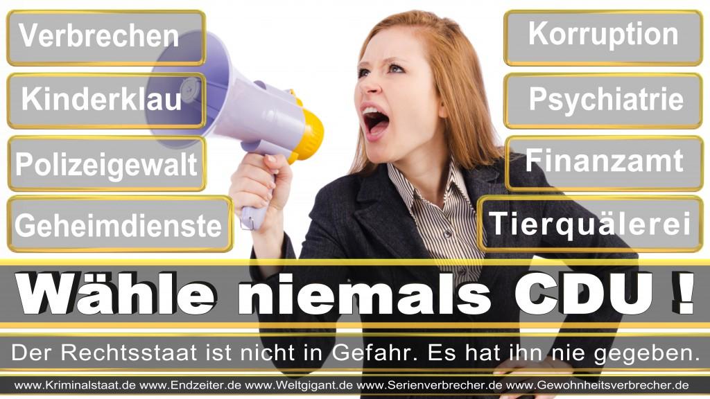 Landtagswahl-2017-NRW-CDU (13)