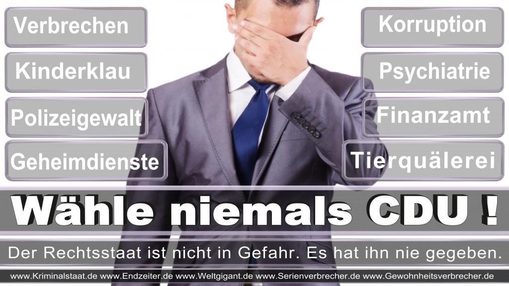 Landtagswahl-2017-NRW-CDU (131)