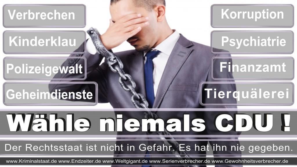 Landtagswahl-2017-NRW-CDU (132)