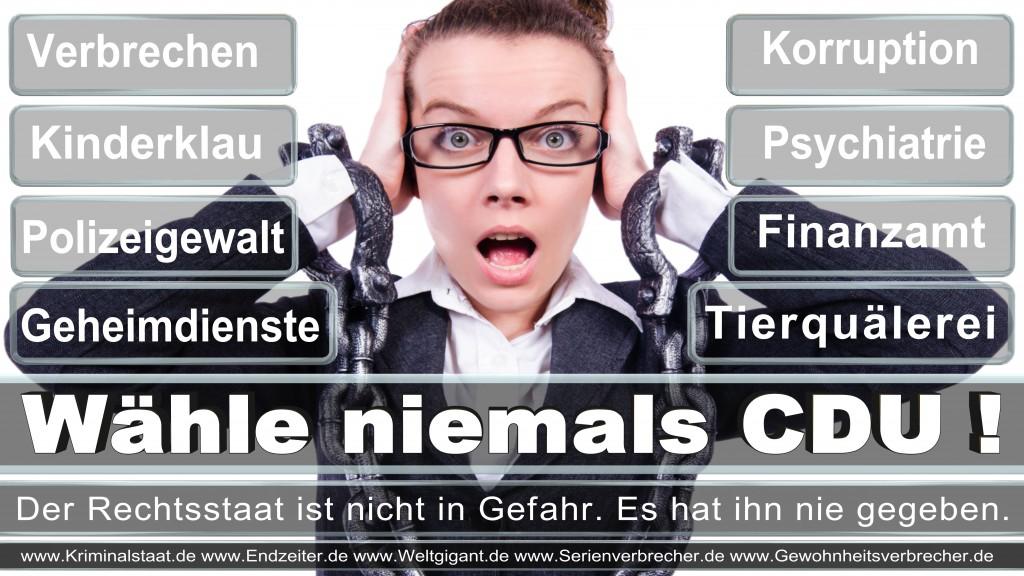 Landtagswahl-2017-NRW-CDU (133)