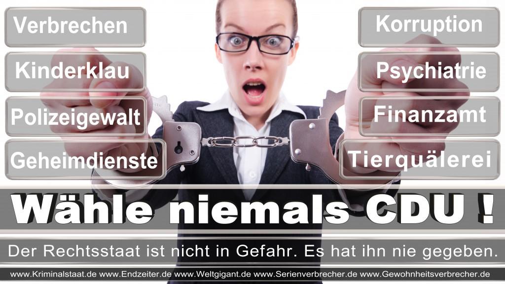 Landtagswahl-2017-NRW-CDU (134)