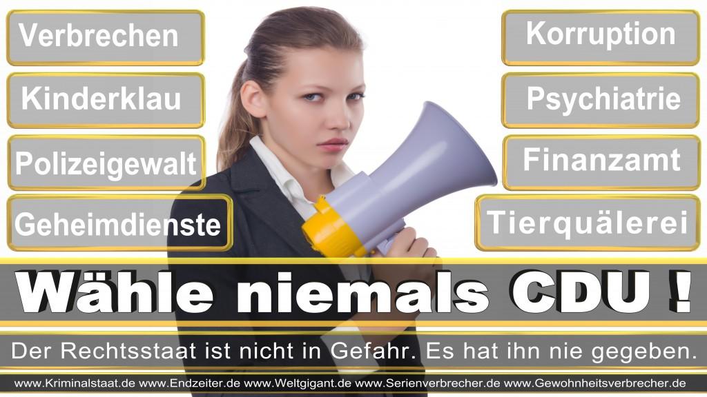 Landtagswahl-2017-NRW-CDU (14)
