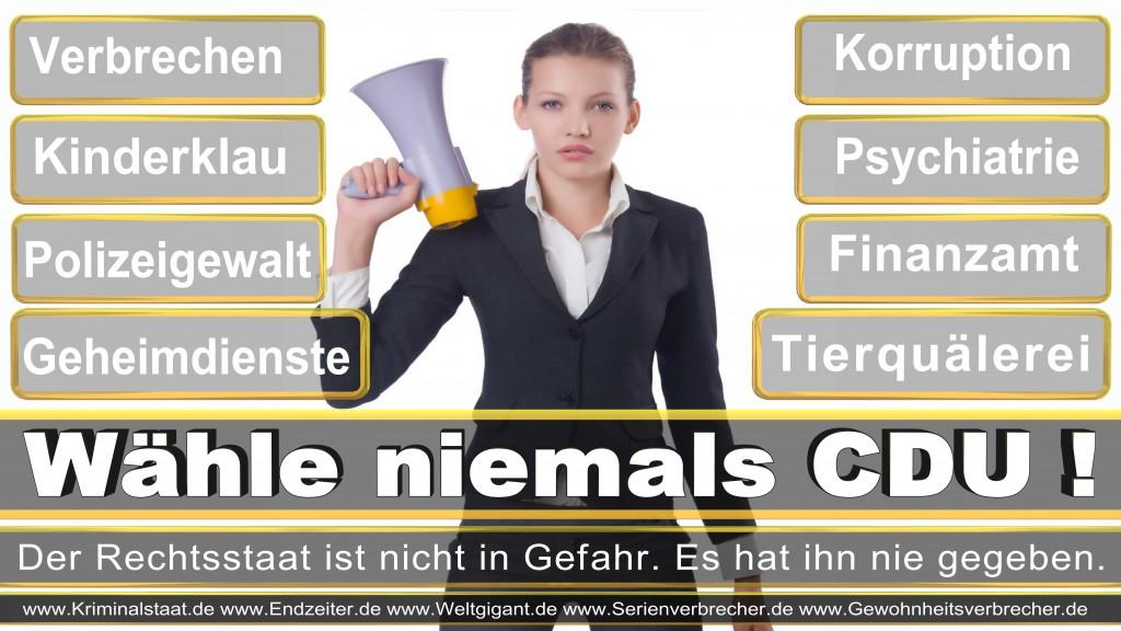 Landtagswahl-2017-NRW-CDU (15)