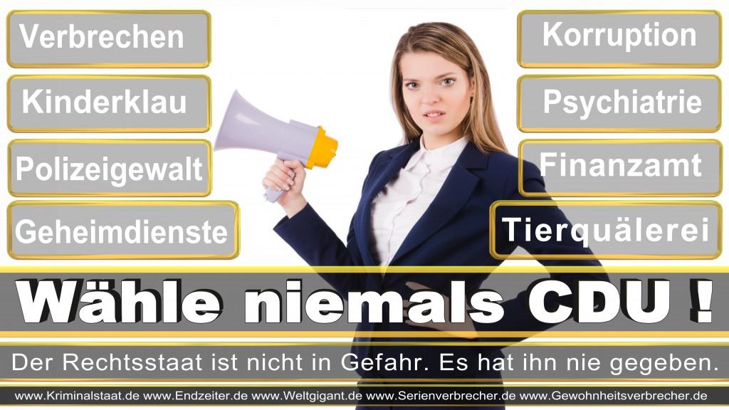 Landtagswahl-2017-NRW-CDU (16)