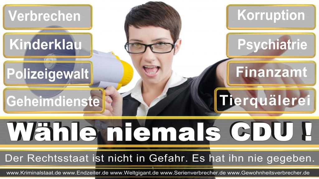 Landtagswahl-2017-NRW-CDU (17)