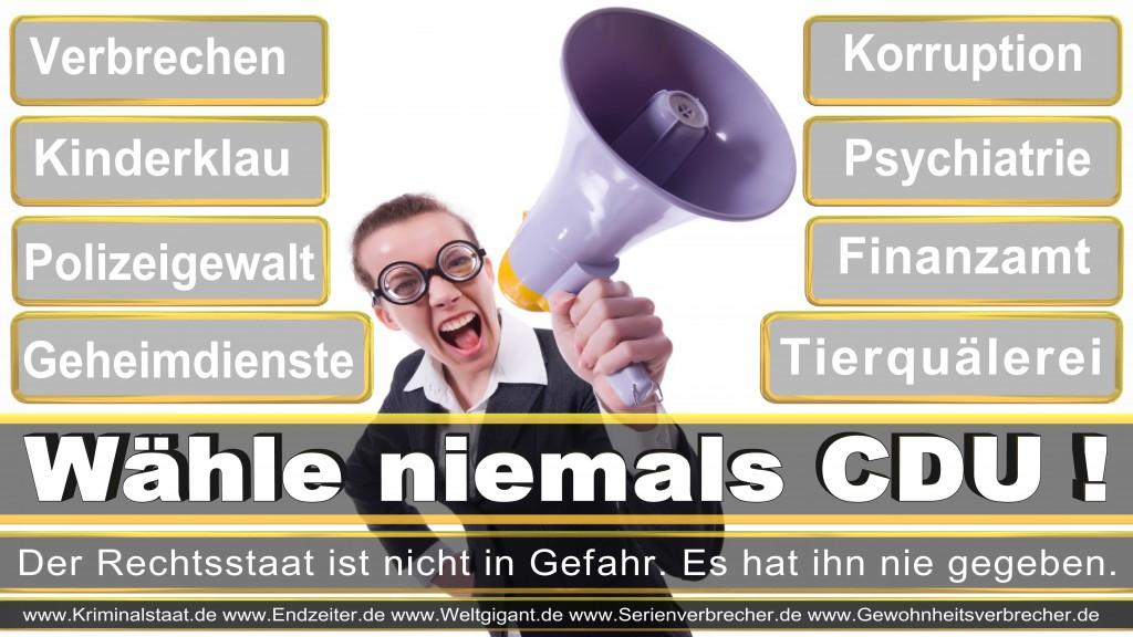 Landtagswahl-2017-NRW-CDU (18)