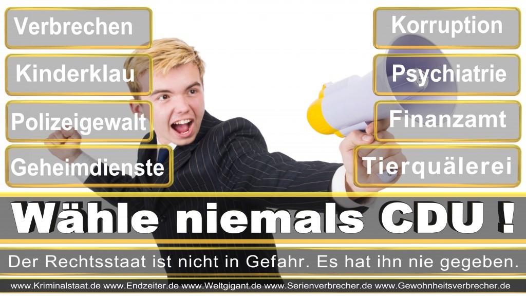 Landtagswahl-2017-NRW-CDU (19)