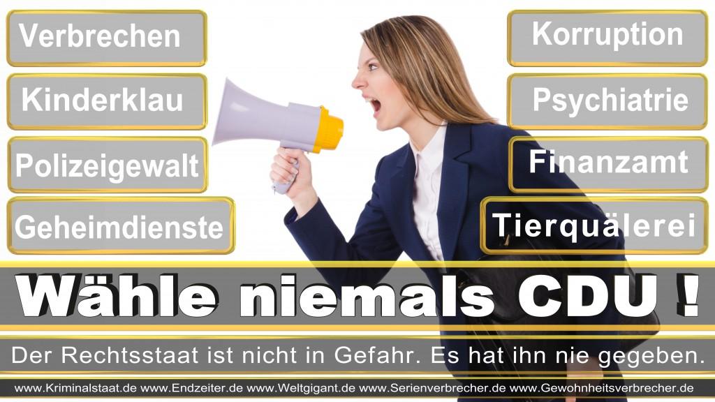 Landtagswahl-2017-NRW-CDU (20)