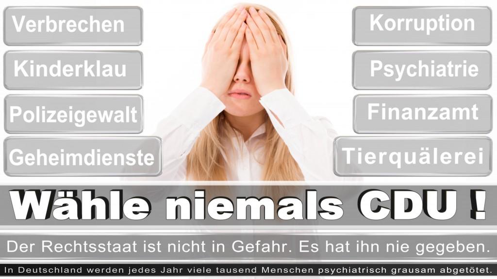 Landtagswahl-2017-NRW-CDU (27)