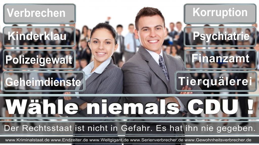 Landtagswahl-2017-NRW-CDU (3)