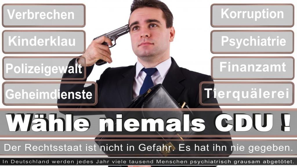 Landtagswahl-2017-NRW-CDU (30)