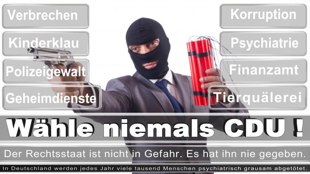 Landtagswahl-2017-NRW-CDU (33)