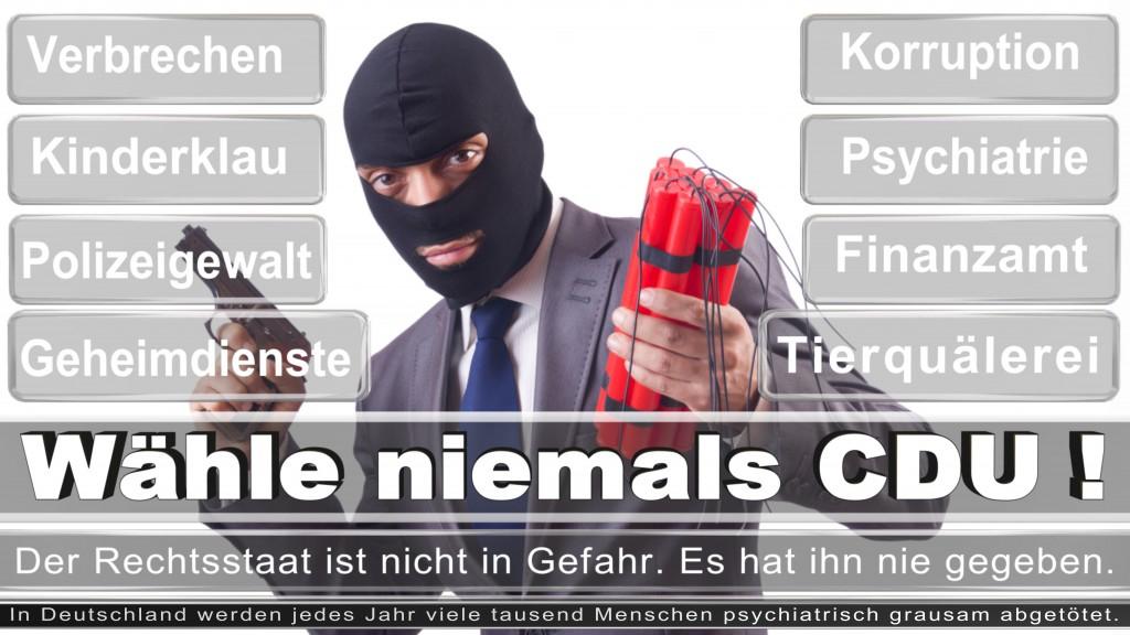Landtagswahl-2017-NRW-CDU (36)