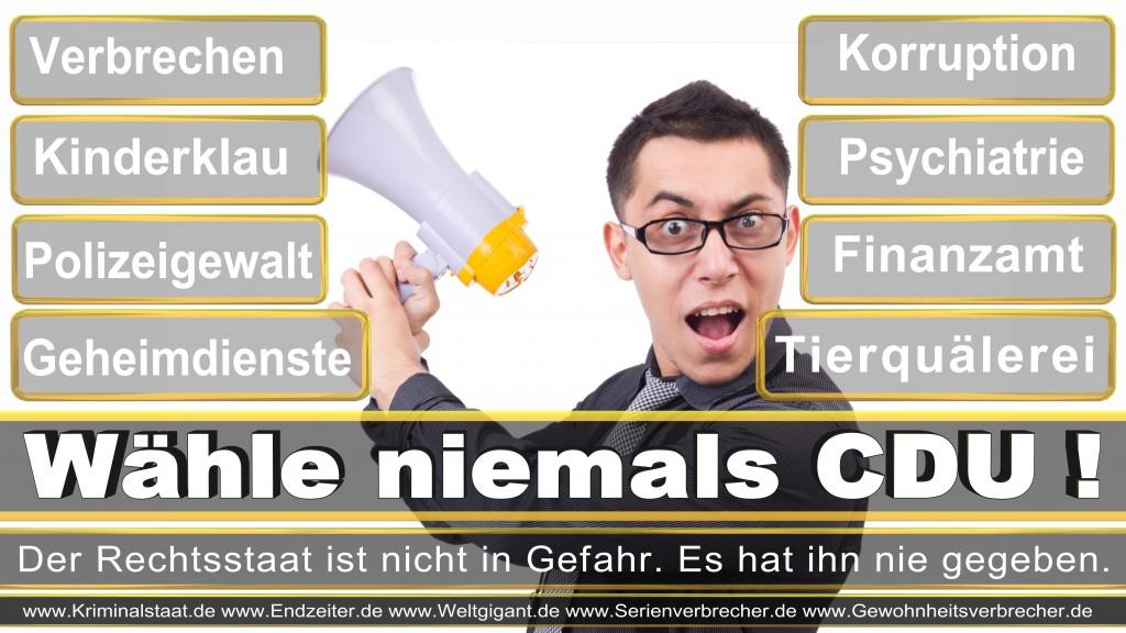 Landtagswahl-2017-NRW-CDU (4)