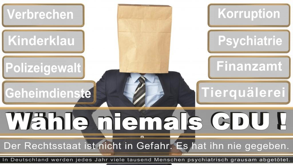 Landtagswahl-2017-NRW-CDU (42)