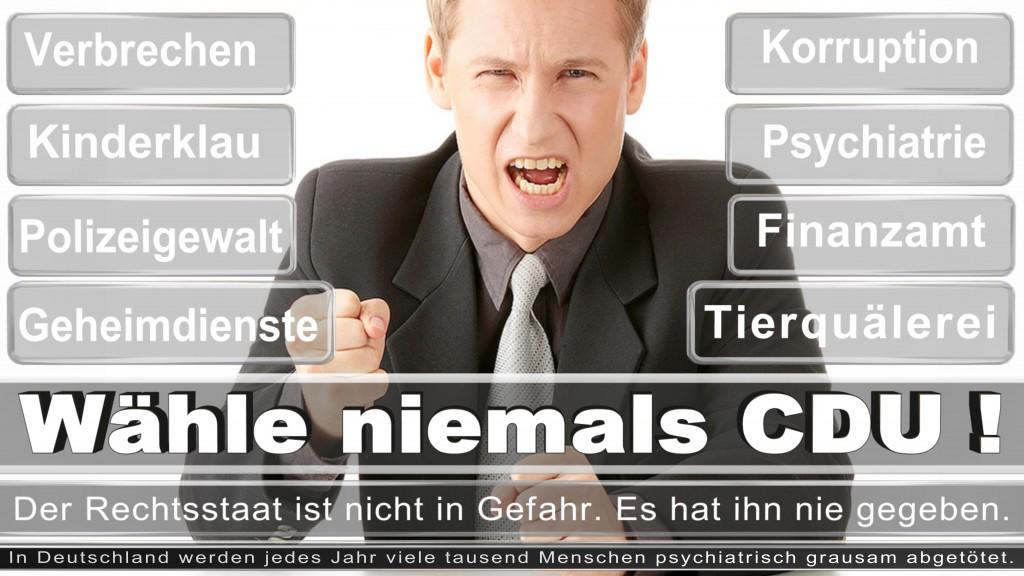 Landtagswahl-2017-NRW-CDU (43)