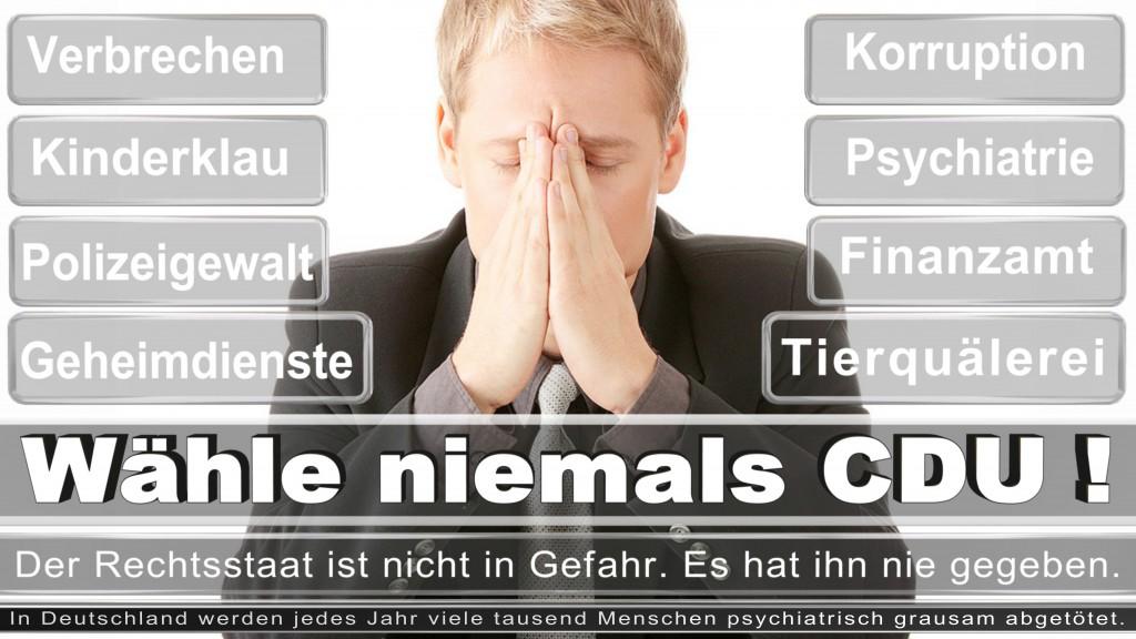 Landtagswahl-2017-NRW-CDU (44)