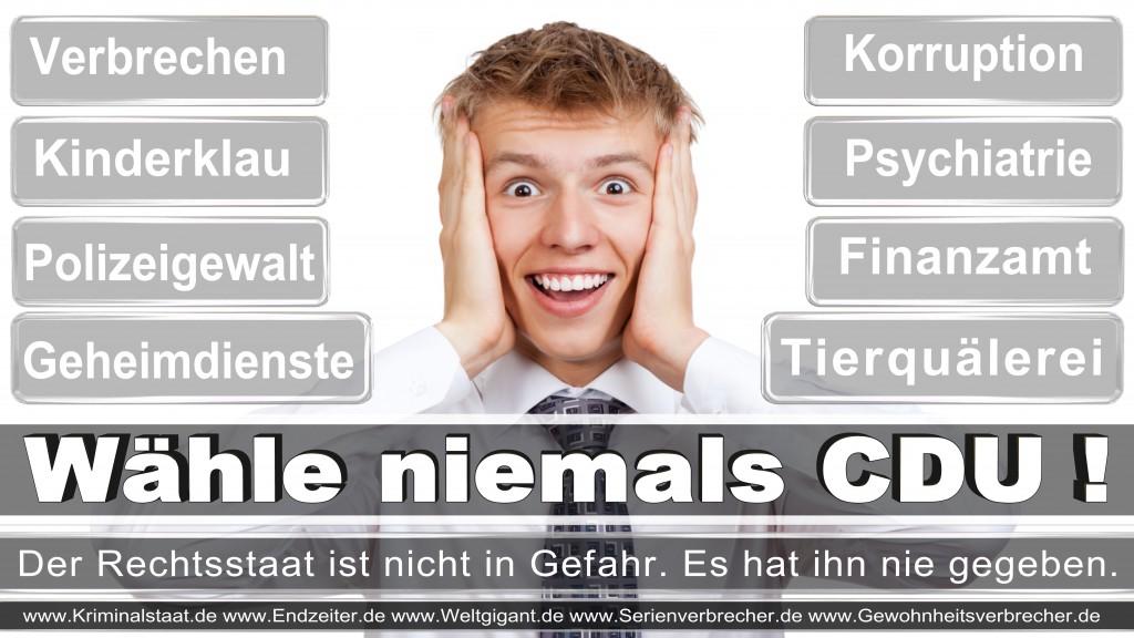 Landtagswahl-2017-NRW-CDU (5)