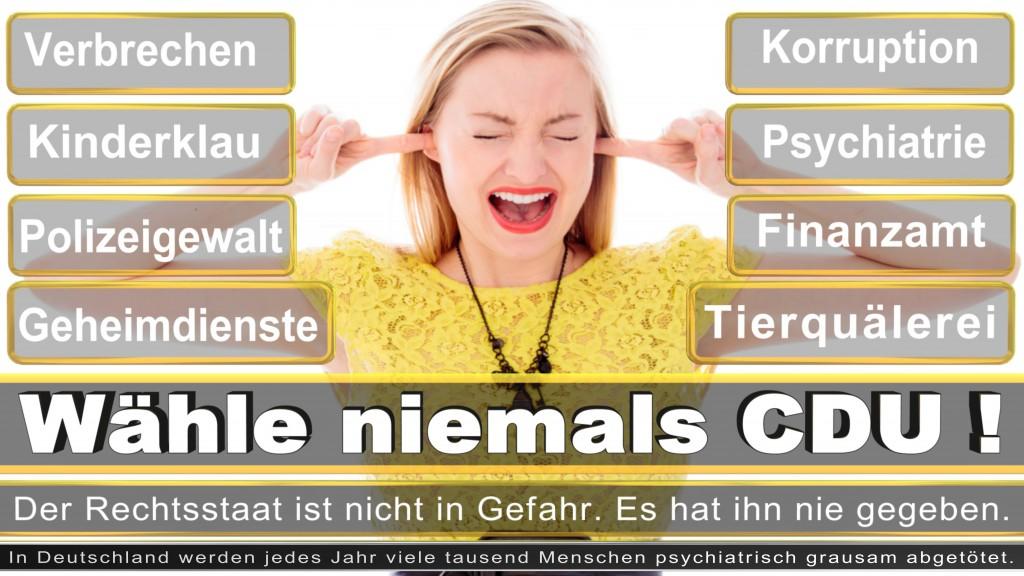 Landtagswahl-2017-NRW-CDU (50)