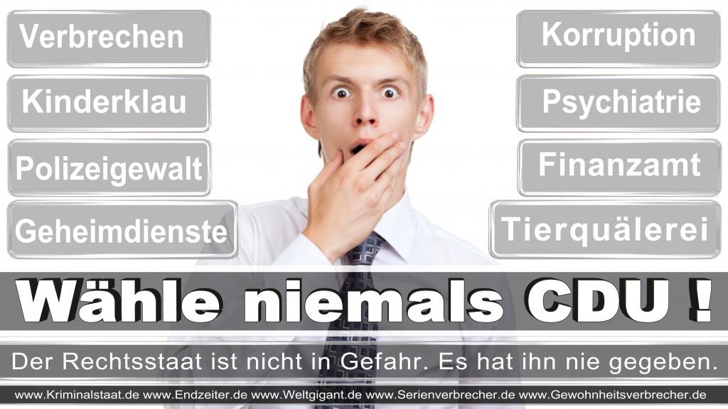 Landtagswahl-2017-NRW-CDU (6)