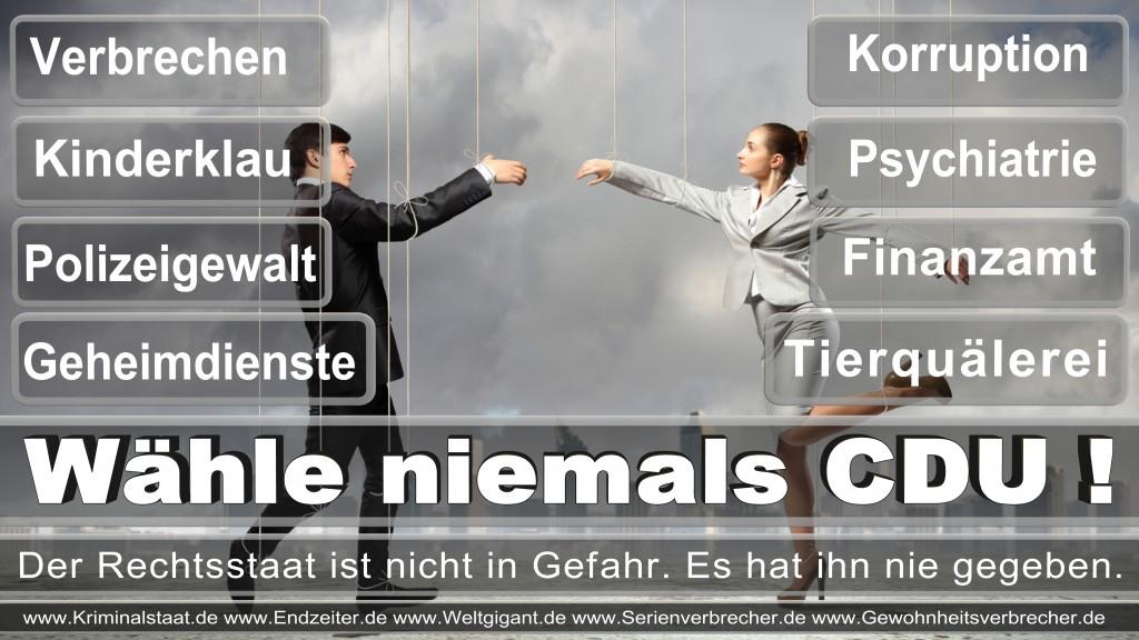 Landtagswahl-2017-NRW-CDU (61)