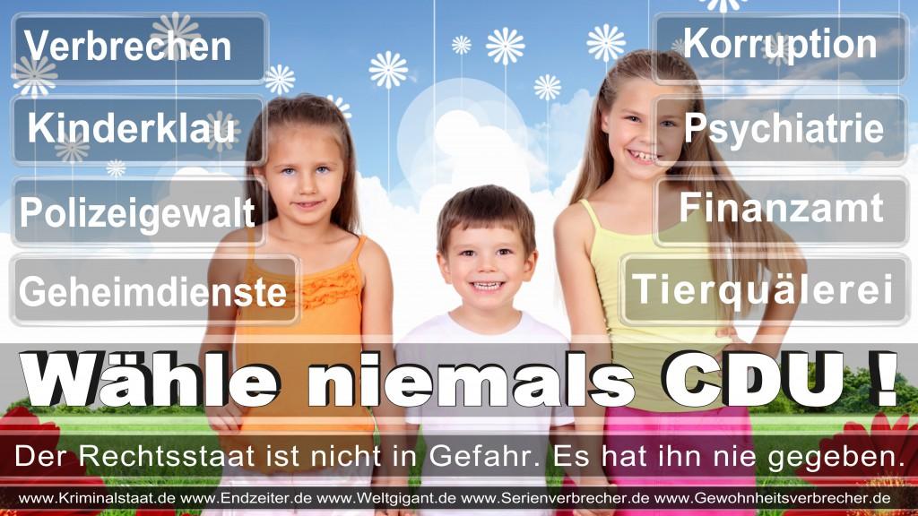 Landtagswahl-2017-NRW-CDU (69)