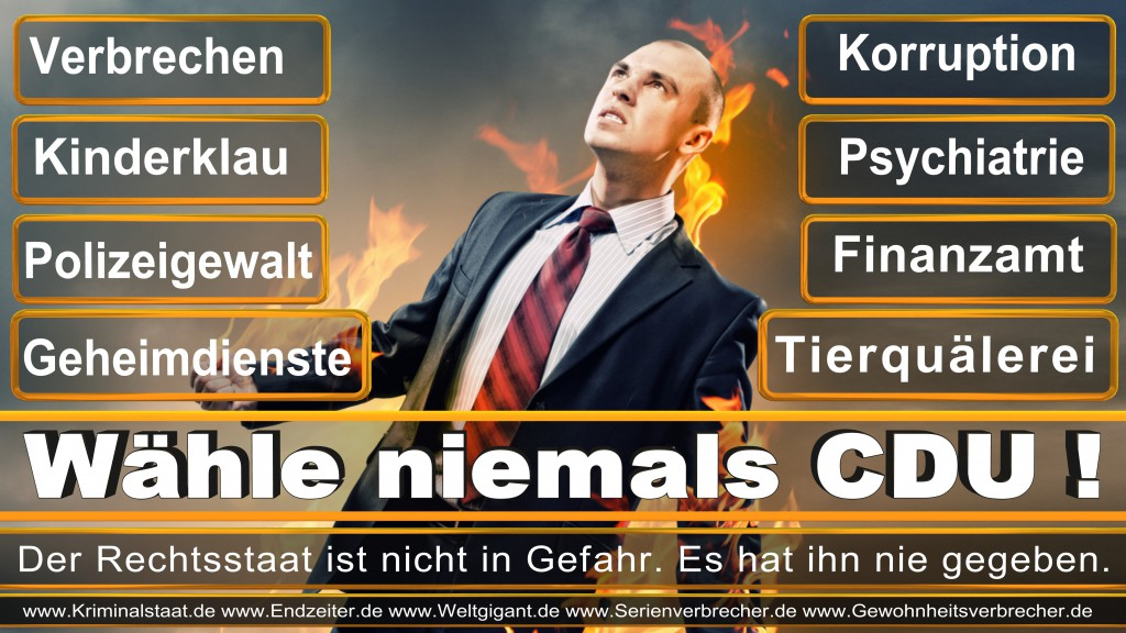 Landtagswahl-2017-NRW-CDU (7)