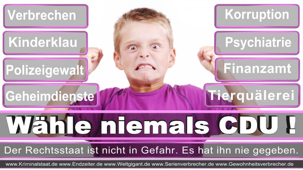 Landtagswahl-2017-NRW-CDU (85)