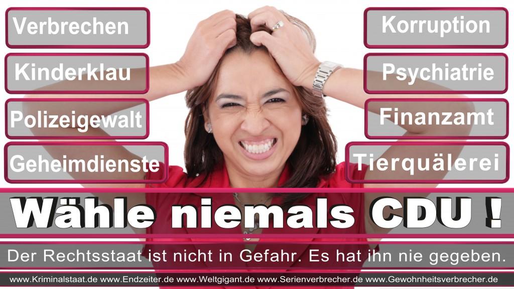Landtagswahl-2017-NRW-CDU (86)