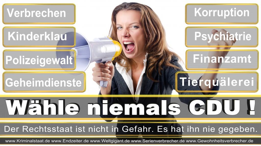 Landtagswahl-2017-NRW-CDU (9)