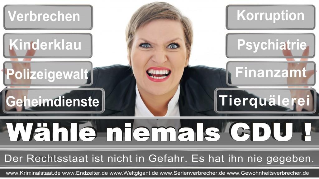 Landtagswahl-2017-NRW-CDU (99)