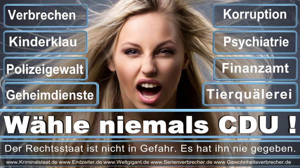 Bundestagswahl, 2017, CDU,SPD, Wahlplakat, Wahlplakate, Stimmzettel, Briefwahl, Wahlwerbung, Termin, Datum, Umfrage, Prognose, Wahlwerbespot, Fernsehspots,