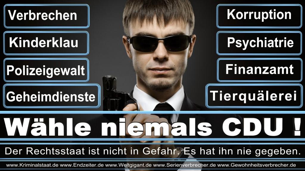 Landtagswahl Landtagswahl 2018 CSU Wahlplakate NRW CDU SPD FDP AfD, Bundestagswahl, 2017, CDU,SPD, Wahlplakat, Wahlplakate, Stimmzettel, Briefwahl, Wahlwerbung, Termin, Datum, Umfrage, Prognose, Wahlwerbespot, Fernsehspots,