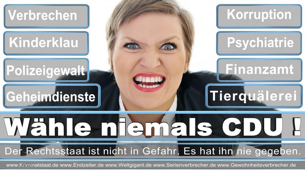 Landtagswahl Saarland CDU SPD  FDP Annegret Kramp-Karrenbauer,  Heiko Maas,  Stephan Toscani,  Monika Bachmann,  Andreas Storm,  Anke Rehlinger,  Ulrich Commerçon,